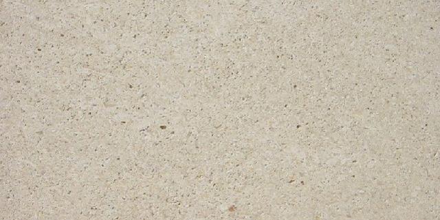 Natural Stone Shellstone
